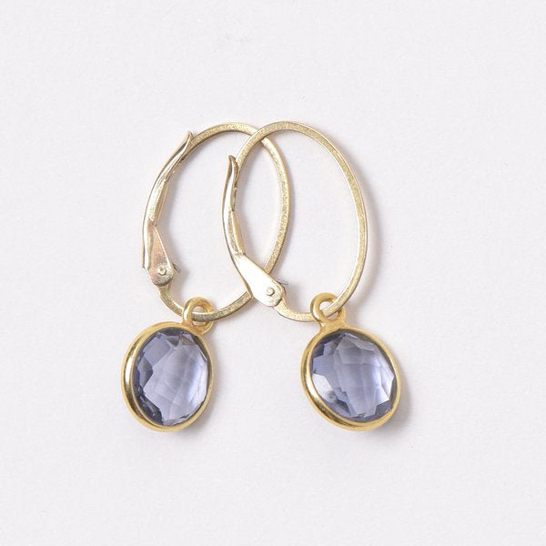 Goldfill Leverback Oval Hoop Earrings