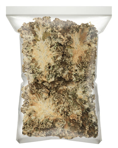 Kale Chips - Sea Salt & Vinegar 1lb