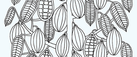 Marimekko  Kaakaopuu Wallpaper Black/White