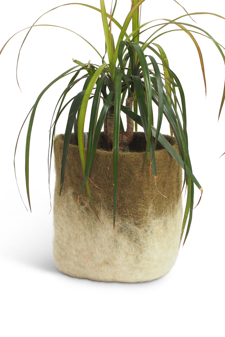 Aveva Felt Flower Pot/Basket 18 Medium Olive