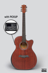 Deviser LS-550 EQ Acoustic-Electric Guitar