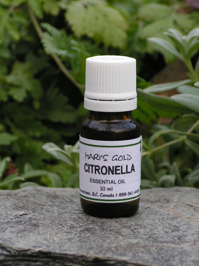 Citronella - 10 ml