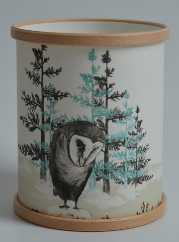 A Northern Light Barn Owl Candle Cover