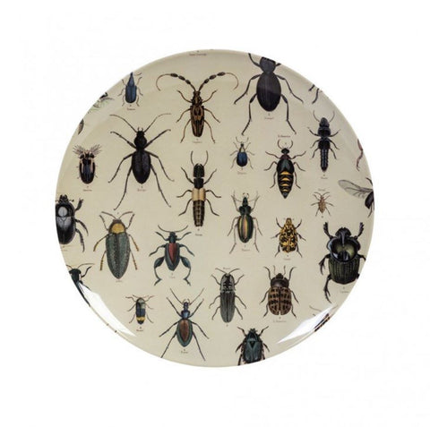 Cubic Biologica Beetle Collection Platter