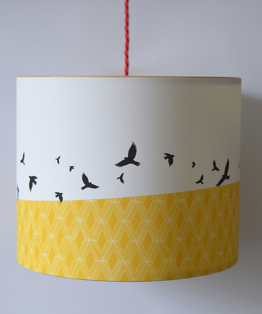 A Northern Light Free Flying Lampshade