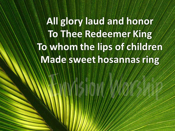 All Glory Laud and Honor Worship Slides with gorgeous palm branch background