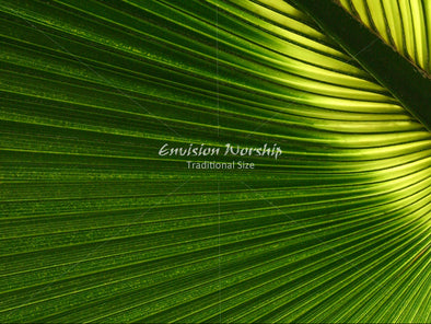 Palm Sunday church slide, Palm Sunday Christian background with lots of room for lyrics and Bible verses.