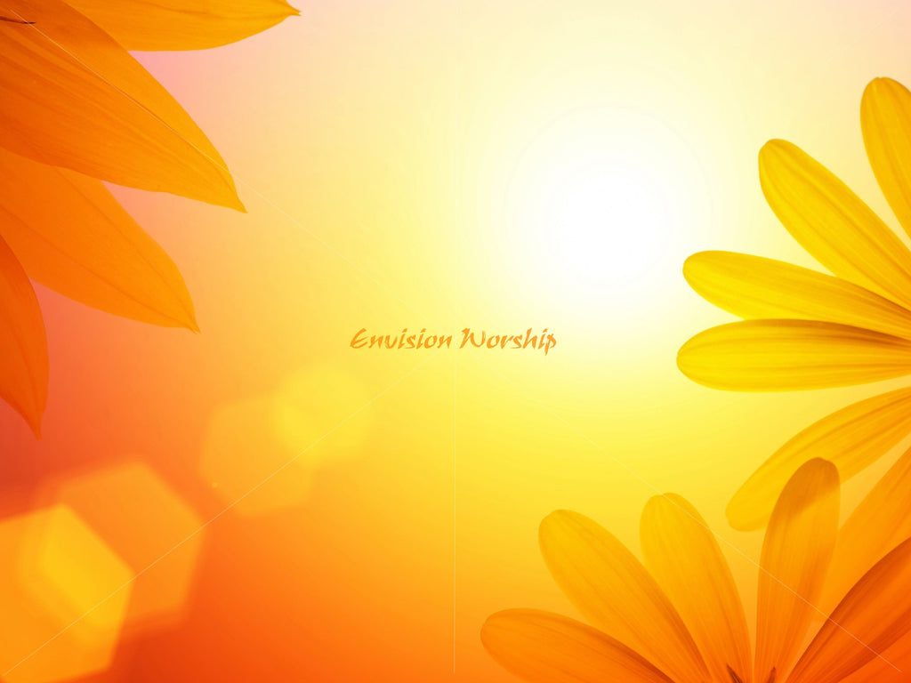 sunflowers  a chrisitan powerpoint template and background