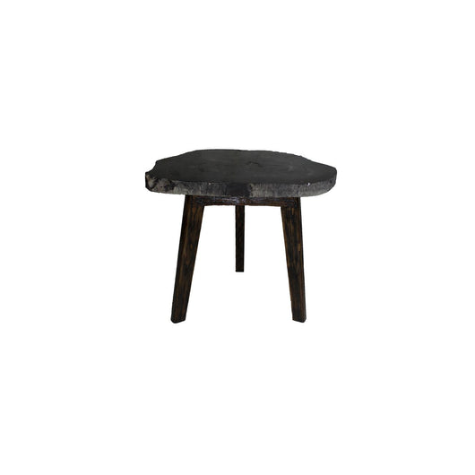 Zandra Petrified Side Table