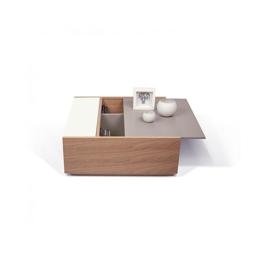 Temahome Dann Coffee Table