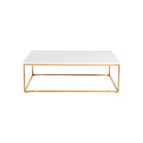 Euro Style Teresa Rectangular Coffee Table