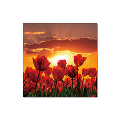 J&M Premium Acrylic Wall Art - Flowers in Bloom