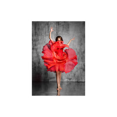 J&M Premium Acrylic Wall Art - Red Dancer