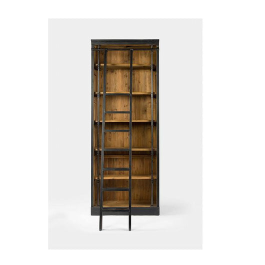 Irondale Ivy Bookcase And Ladder