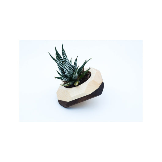 Tilted Geometric Wooden Planter