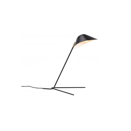 Mussla Table Lamp