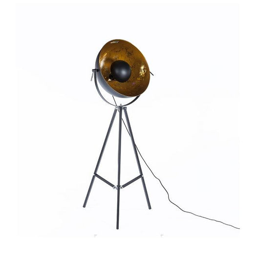 Control Brand Fortune Floor Lamp