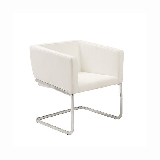 Euro Style Ari Lounge Chair