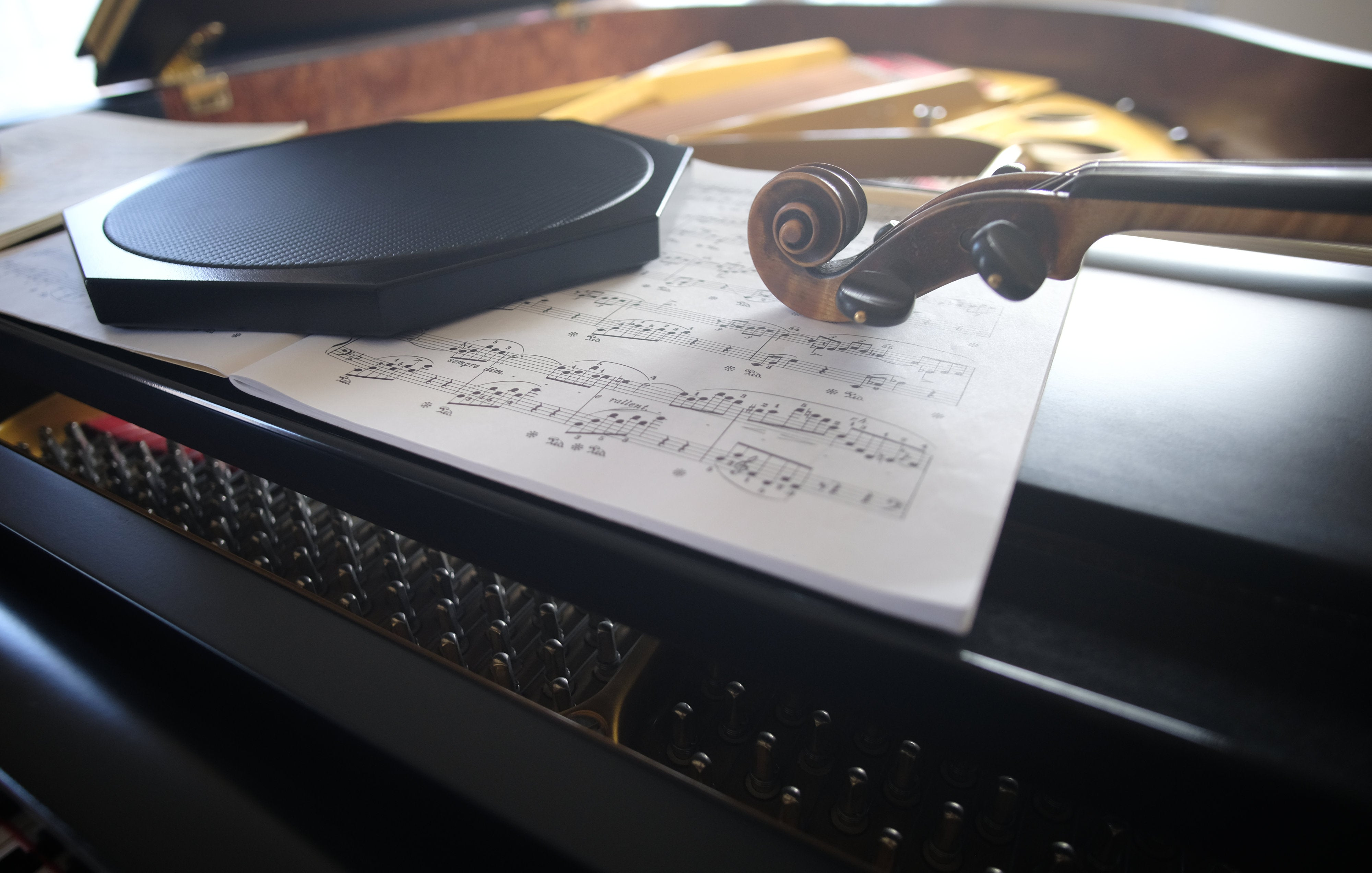 The Rhythmic Dexterity Pad® Training Surface for Performing Musicians and Instrumentalists