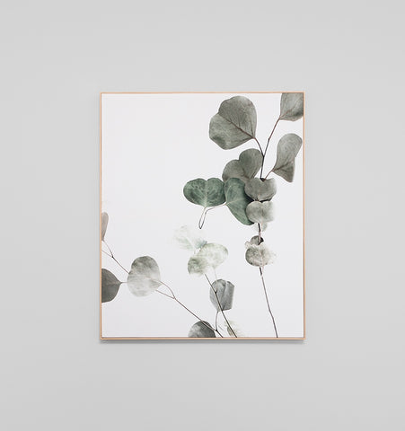 Eucalyptus Leaves 2 Box Framed Canvas