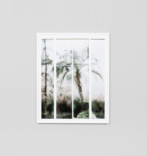 Greenhouse Window Framed Print