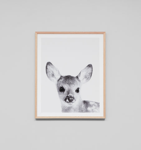Loveable Fawn Framed Print