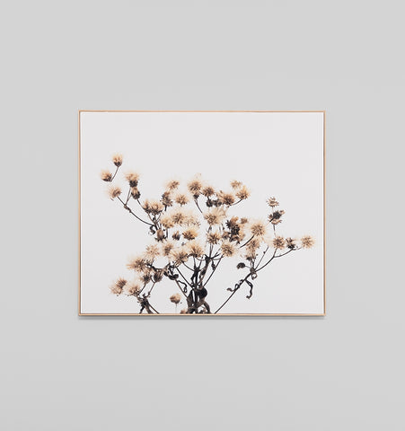 Wildflowers Box Framed Canvas