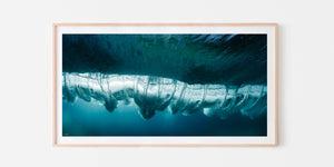 Underwater Turbulence PANO | OCEAN ART COLLECTION