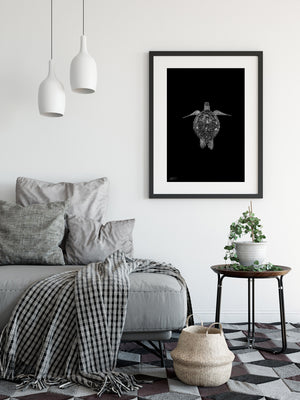 Black and White Wall art with classic black frame - Turtle
