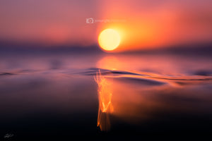 Sunrise Ocean Photography and Wall Art