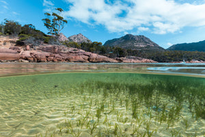 Honeymoon Bay - Freycinet NP - Tasmania