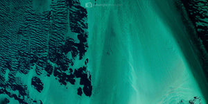 Birds eye view artwork of sea grass and beach in Western Australia