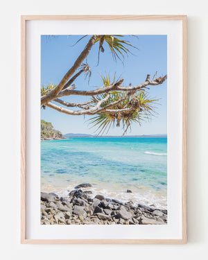 Noosa Framed Art Oak