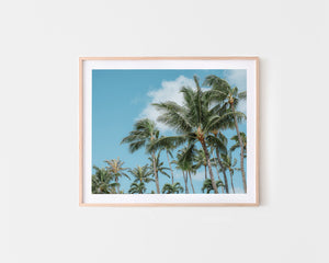 Tropical Beach Art Palm Trees