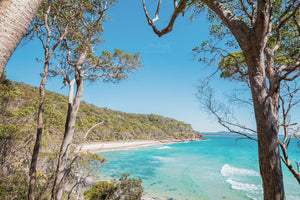 Tea Tree Bay Noosa Heads QLD