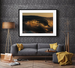 Tiger Shark Black Frame Surf Photo