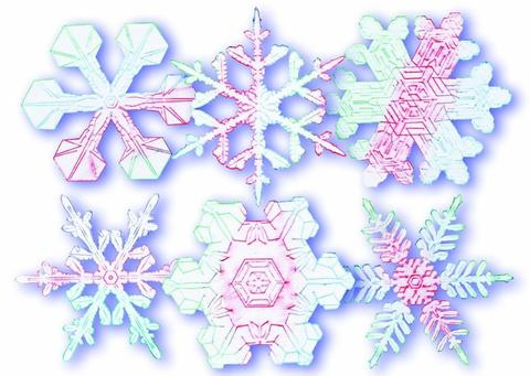 Picture of Rubbing Plates: Snowflake