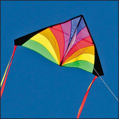 Kites for Kids: Delta Kite