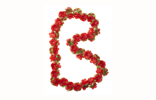 Basil Flower Garlands red