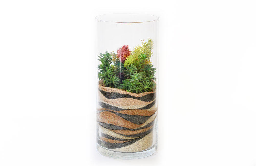 Sand Art Terrarium Kit