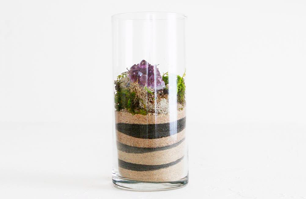 Crystal Terrarium Kit