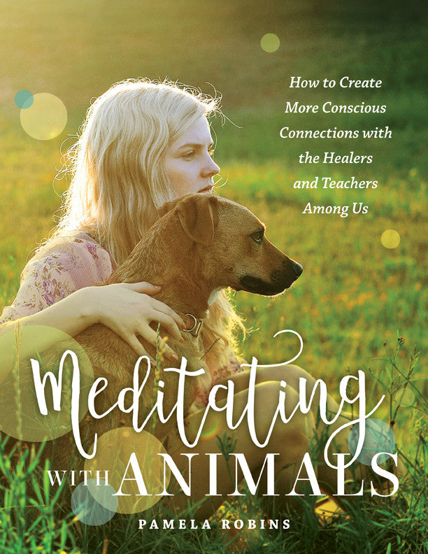 Book - Meditating with Animals + Soft Cover