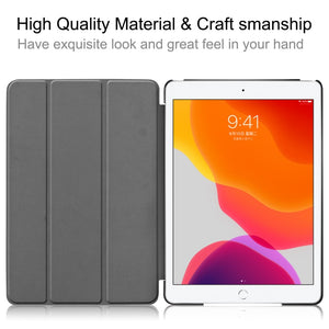 AMZER Colored Drawing Horizontal Flip Leather Case With 3-Fold Holder & Sleep/ Wake-up Function for Apple iPad 10.2