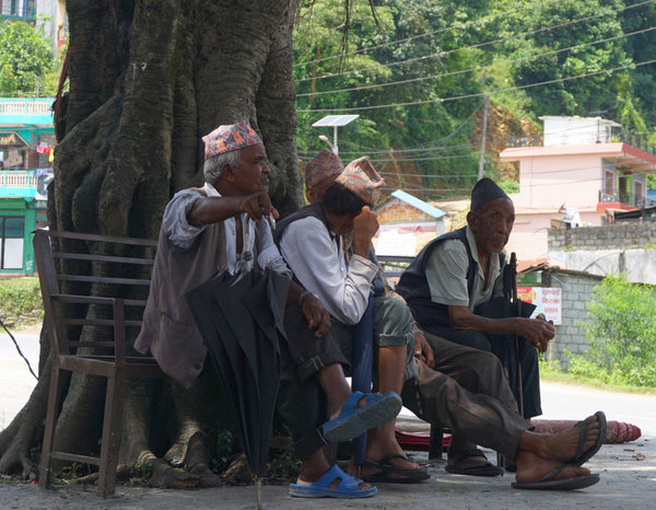 People sitting under tree. Kalilo - harmony between nature and people