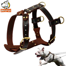 Load image into Gallery viewer, Genuine Leather Dog Harness Training Harnesses 23''-34.5'