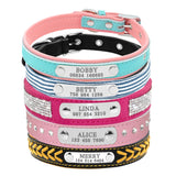 Bling for a  Puppy or Cat Collars.  Free Shipping