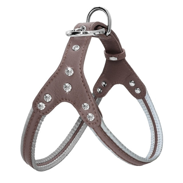 Leather Reflective Harnesses