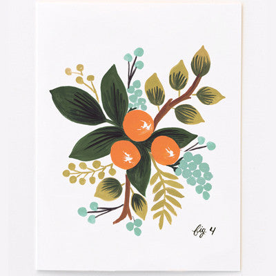 Pony Lane Rifle Paper Co Floral Boxed Set Cards - Clementine