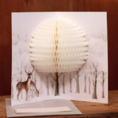 O-Check Pop Up 3D Stag Card