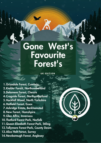 Our favorite forests